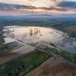 La Conselleria d'Agricultura, Emergència Climàtica i Transició Ecològica cataloga set noves zones humides