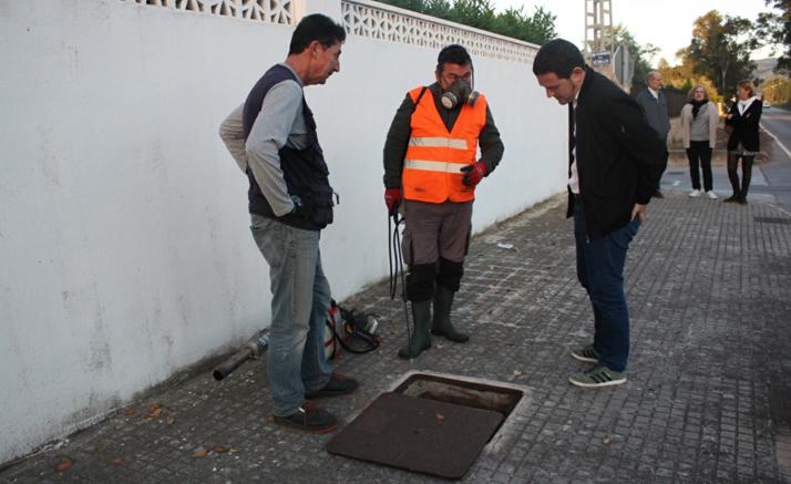 Castelló valora en 200.000 euros l'ampliació dels tractaments antimosquits