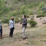 Benicàssim actua a les urbanitzacions de muntanya per a la prevenció d'incendis forestals