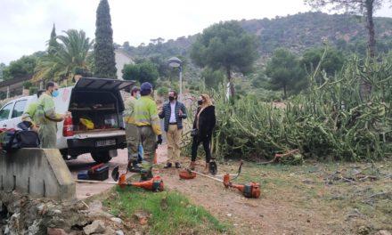 Benicàssim continua amb les labors de prevenció d'incendis forestals en urbanitzacions de muntanya